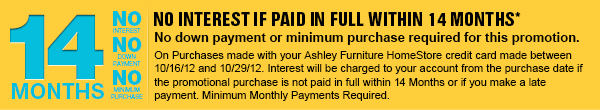 NO INTEREST IF PAID IN FULL WITHIN 14 MONTHS*